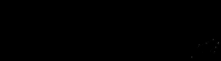 SchipAlong